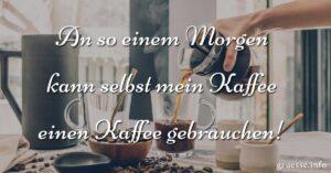 An so einem Morgen kann selbst mein Kaffee einen Kaffee gebrauchen!
