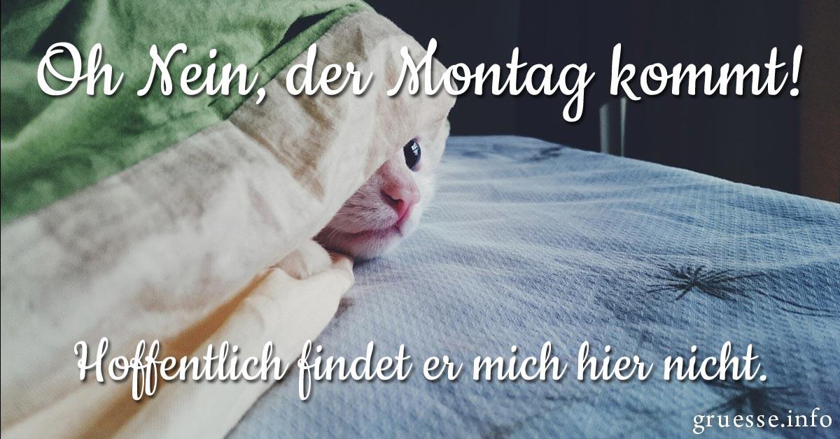 Oh Nein, der Montag kommt!