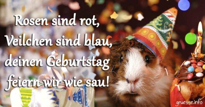 Rosen sind rot, Veilchen sind blau, deinen Geburtstag feiern wir wie sau!