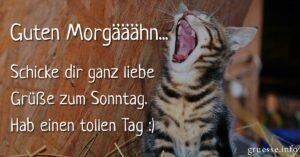Guten Morgääähn... Schicke dir ganz liebe Grüße zum Sonntag. Hab einen tollen Tag :)