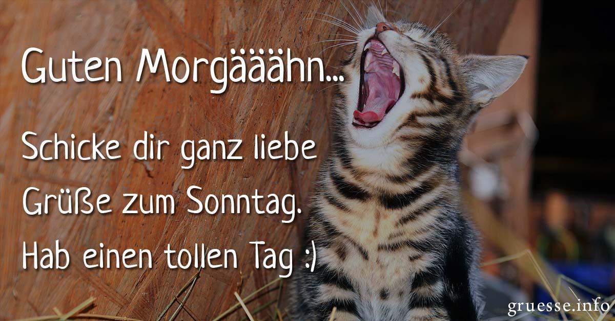 Guten Morgääähn… Schicke dir ganz liebe Grüße zum Sonntag.