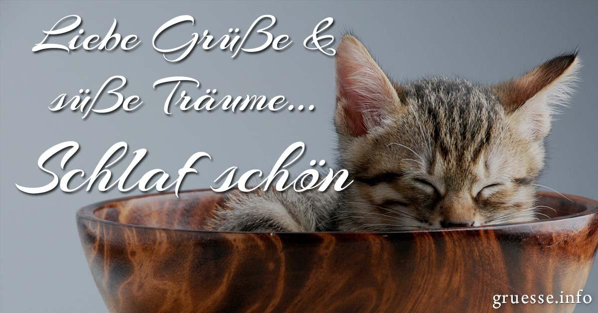 Liebe Grüße und süße Träume... Schlaf schön.