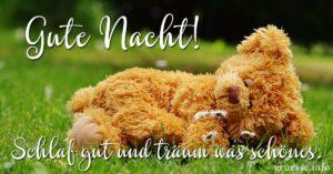 Gute Nacht! Schlaf gut und träum was schönes.