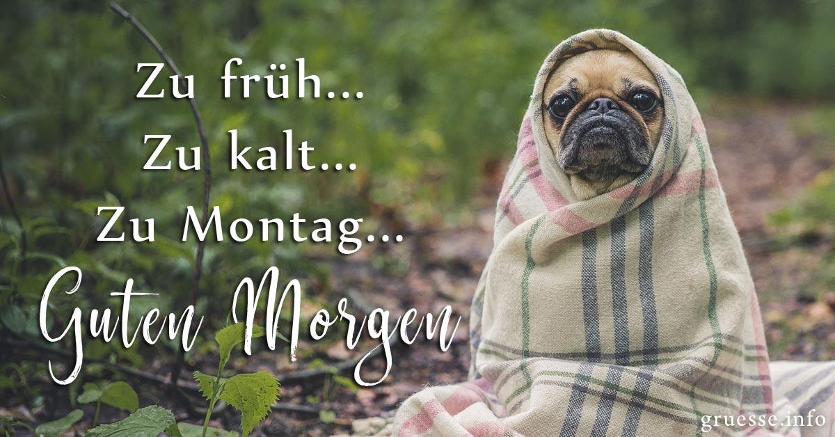 Zu früh... Zu kalt... Zu Montag... Guten Morgen